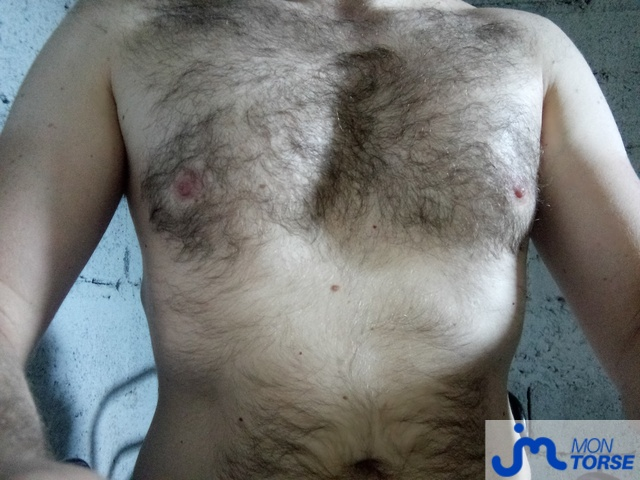 Photo du torse de Pierredu28